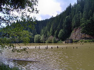 lacul rosu judetul Neamt